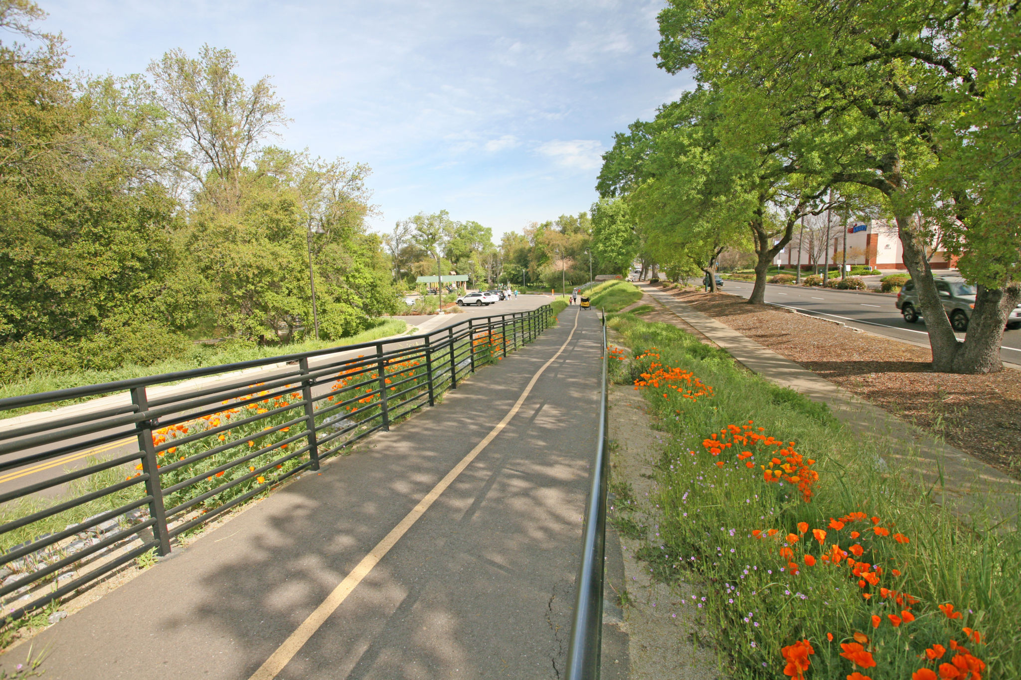 Trail to parking lot has ADA-compliant hand rails and landings.