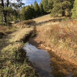 BEN|EN to Design Canal and Treated Water Pipeline Improvements for Georgetown Divide PUD